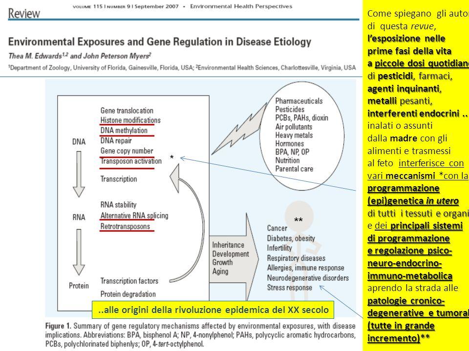 Come spiegano gli autori di questa revue, lesposizione nelle prime fasi della vita a piccole dosi quotidiane di pesticidi, farmaci, agenti inquinanti, metalli pesanti, interferenti endocrini..