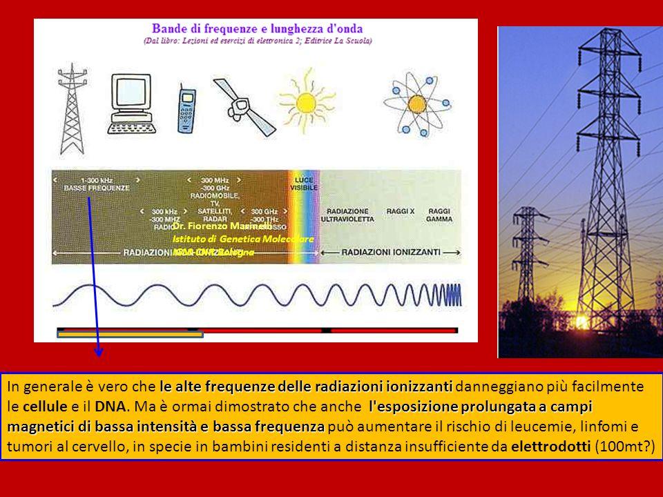 le alte frequenze delle radiazioni ionizzanti l esposizione prolungata a campi magnetici di bassa intensità e bassa frequenza In generale è vero che le alte frequenze delle radiazioni ionizzanti danneggiano più facilmente le cellule e il DNA.