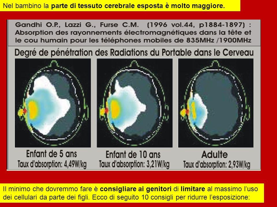 Nel bambino la parte di tessuto cerebrale esposta è molto maggiore.