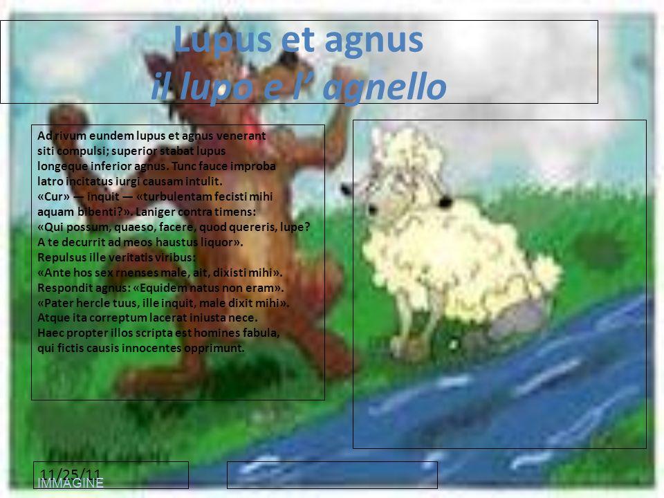 11/25/11 Lupus et agnus il lupo e l agnello Ad rivum eundem lupus et agnus venerant siti compulsi; superior stabat lupus longeque inferior agnus. Tunc