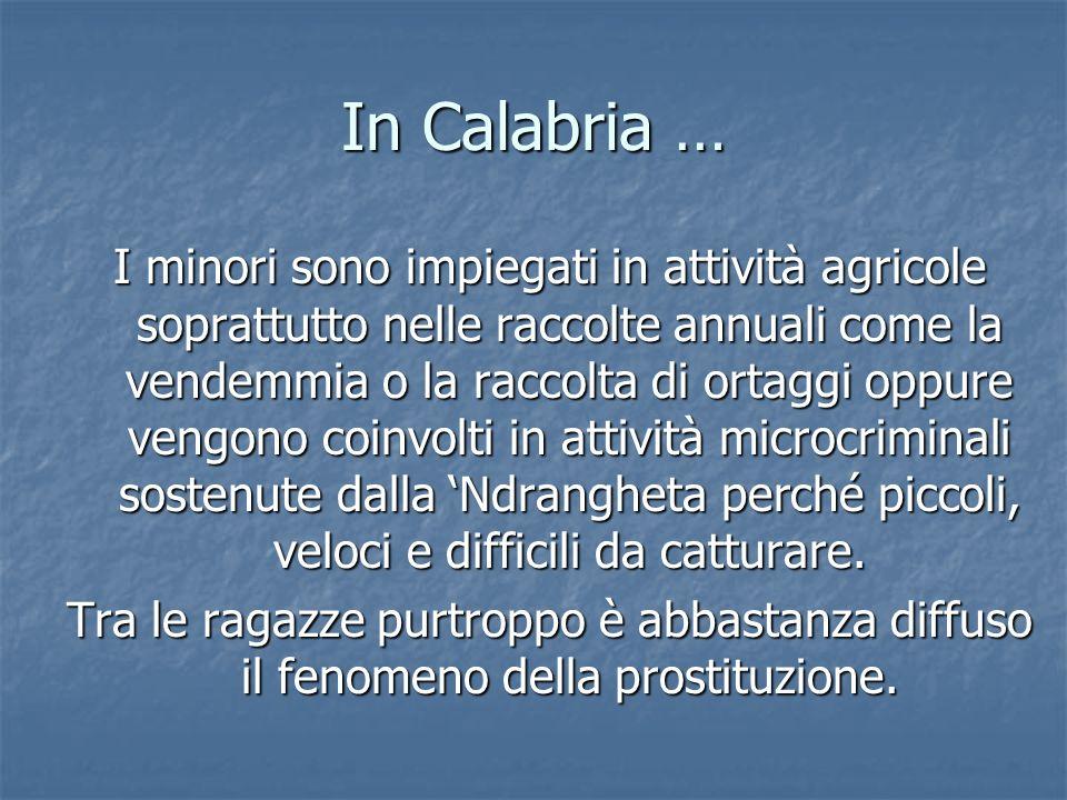 In Calabria … I minori sono impiegati in attività agricole soprattutto nelle raccolte annuali come la vendemmia o la raccolta di ortaggi oppure vengon