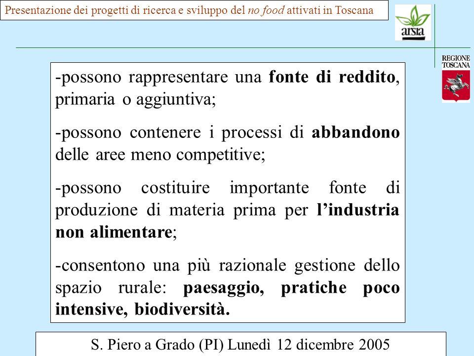 S. Piero a Grado (PI) Lunedì 12 dicembre 2005 -possono rappresentare una fonte di reddito, primaria o aggiuntiva; -possono contenere i processi di abb