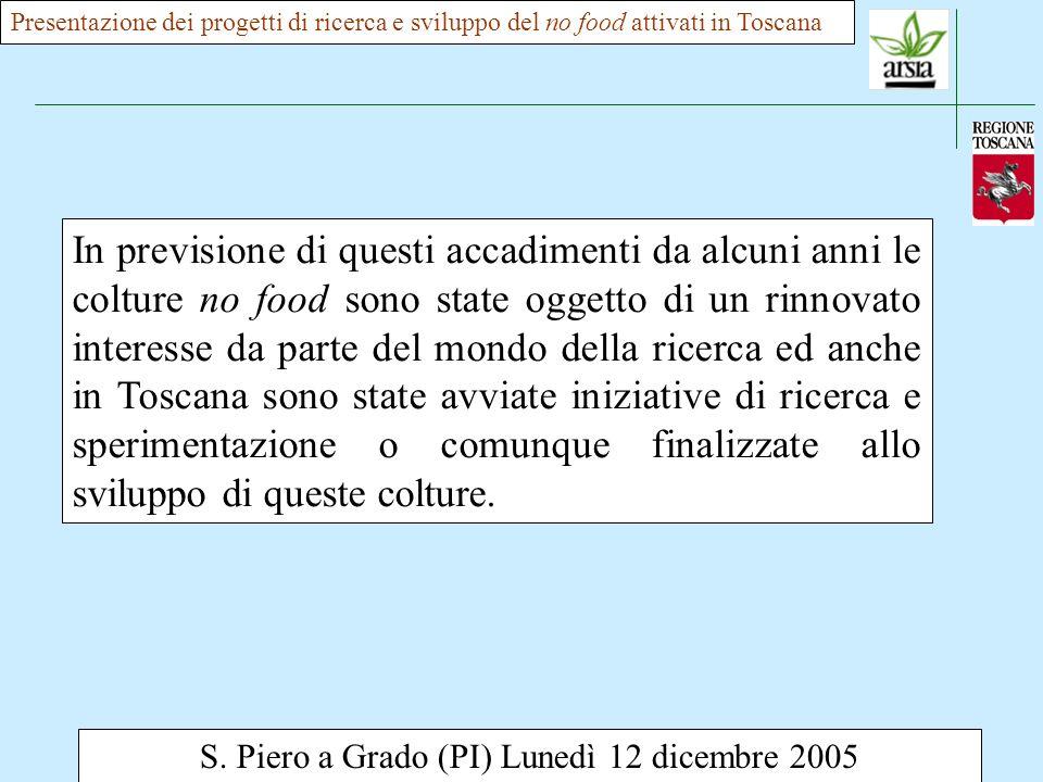 S. Piero a Grado (PI) Lunedì 12 dicembre 2005 In previsione di questi accadimenti da alcuni anni le colture no food sono state oggetto di un rinnovato