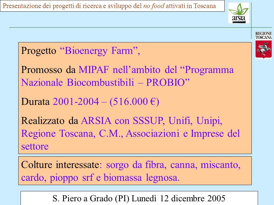 S. Piero a Grado (PI) Lunedì 12 dicembre 2005 Presentazione dei progetti di ricerca e sviluppo del no food attivati in Toscana Progetto Bioenergy Farm