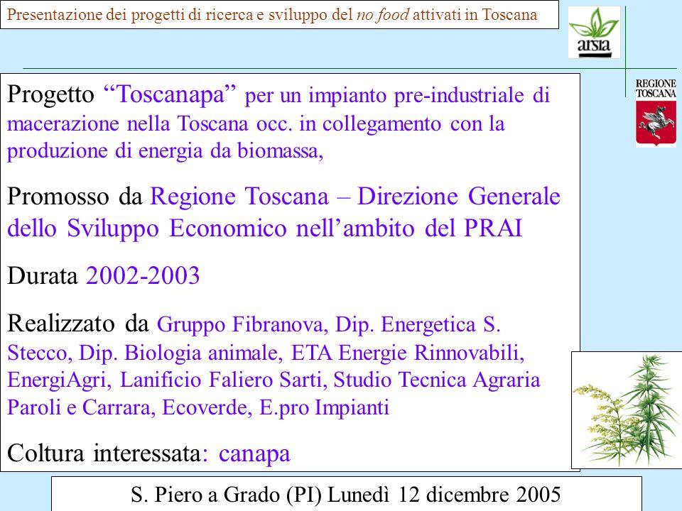 S. Piero a Grado (PI) Lunedì 12 dicembre 2005 Presentazione dei progetti di ricerca e sviluppo del no food attivati in Toscana Progetto Toscanapa per