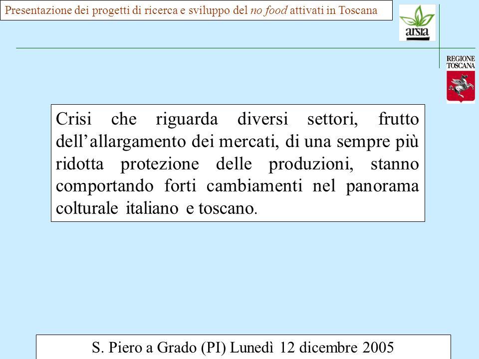 S. Piero a Grado (PI) Lunedì 12 dicembre 2005 Crisi che riguarda diversi settori, frutto dellallargamento dei mercati, di una sempre più ridotta prote