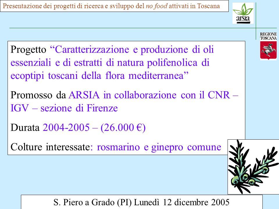 S. Piero a Grado (PI) Lunedì 12 dicembre 2005 Presentazione dei progetti di ricerca e sviluppo del no food attivati in Toscana Progetto Caratterizzazi