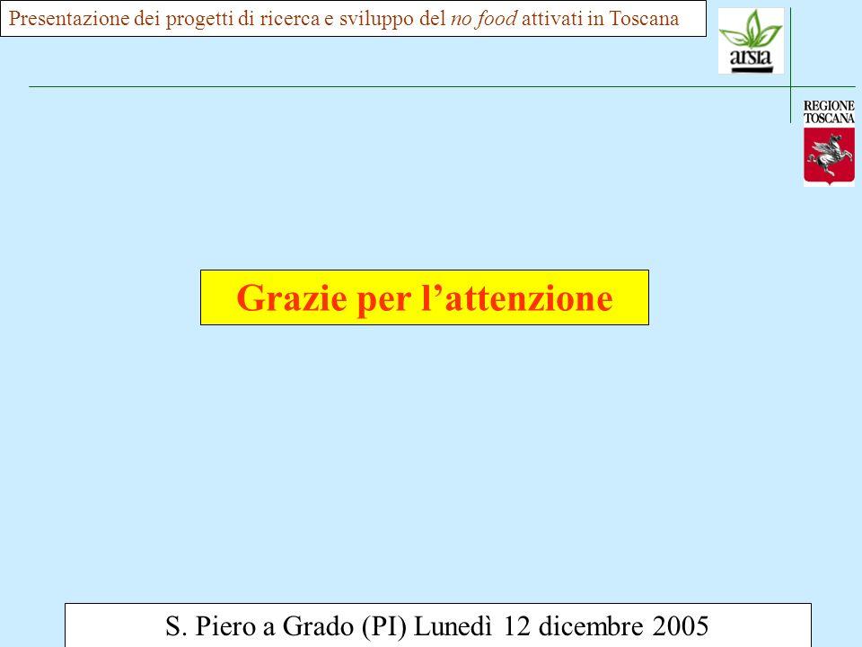 S. Piero a Grado (PI) Lunedì 12 dicembre 2005 Presentazione dei progetti di ricerca e sviluppo del no food attivati in Toscana Grazie per lattenzione