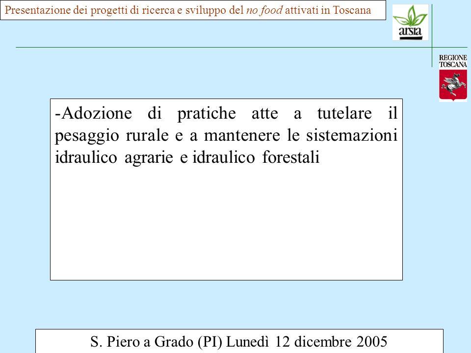 S. Piero a Grado (PI) Lunedì 12 dicembre 2005 -Adozione di pratiche atte a tutelare il pesaggio rurale e a mantenere le sistemazioni idraulico agrarie