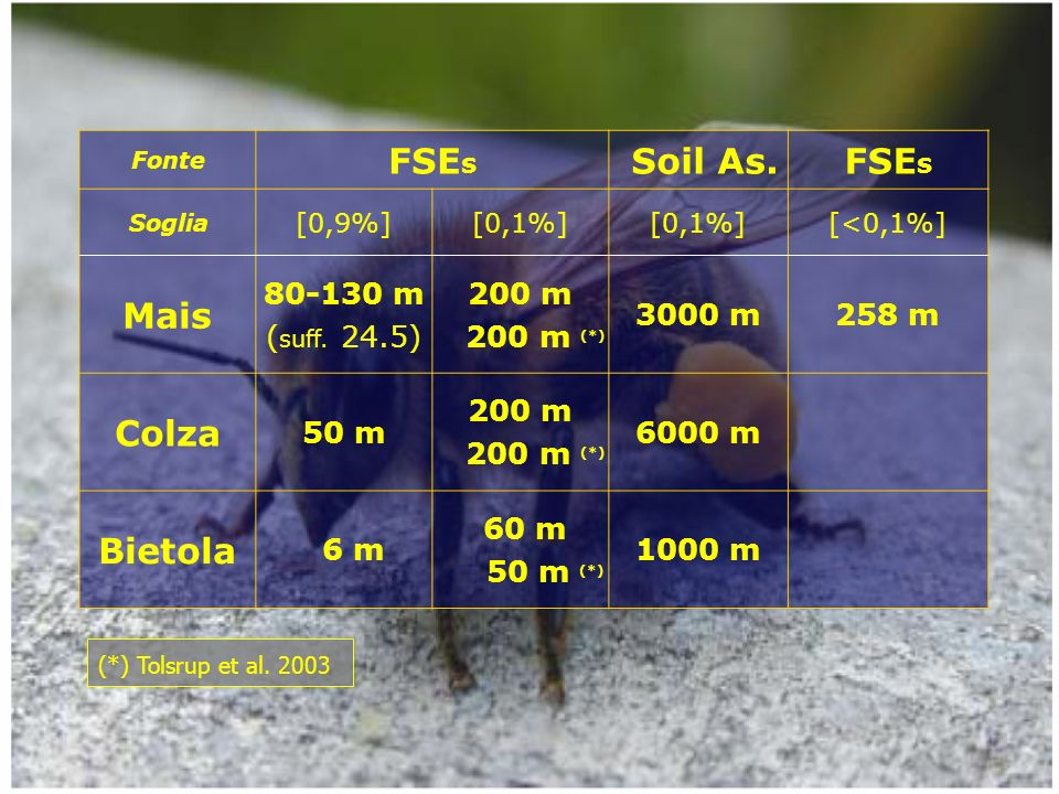 Fonte FSE s Soil As.FSE s Soglia [0,9%][0,1%] [<0,1%] Mais 80-130 m ( suff.