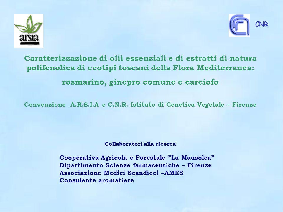 CNR Caratterizzazione di olii essenziali e di estratti di natura polifenolica di ecotipi toscani della Flora Mediterranea: rosmarino, ginepro comune e carciofo Convenzione A.R.S.I.A e C.N.R.