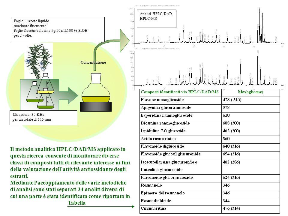 Concentratione Analisi HPLC/DAD HPLC/MS Ultrasuoni; 35 KHz per un totale di 115 min Foglie + azoto liquido macinate finemente foglie fresche/solvente