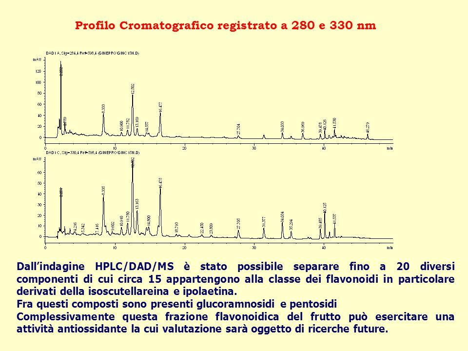 Dallindagine HPLC/DAD/MS è stato possibile separare fino a 20 diversi componenti di cui circa 15 appartengono alla classe dei flavonoidi in particolar