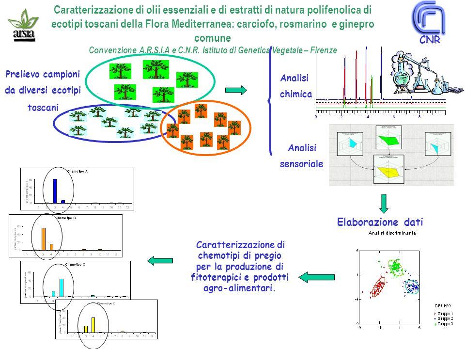 Prelievo campioni da diversi ecotipi toscani Analisi chimica Elaborazione dati Caratterizzazione di chemotipi di pregio per la produzione di fitoterapici e prodotti agro-alimentari.