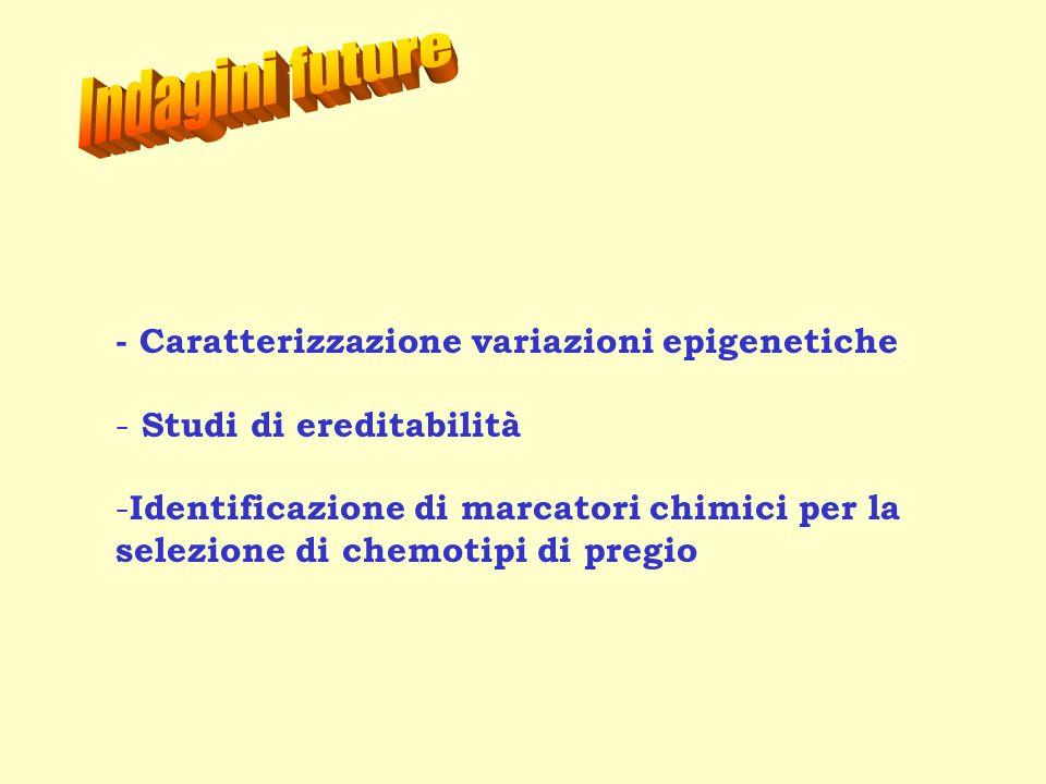 - Caratterizzazione variazioni epigenetiche - Studi di ereditabilità - Identificazione di marcatori chimici per la selezione di chemotipi di pregio