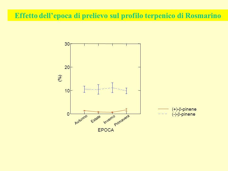 Autunno Estate Inverno Primavera EPOCA 0 10 20 30 (%) (-)- -pinene (+)- -pinene Effetto dellepoca di prelievo sul profilo terpenico di Rosmarino