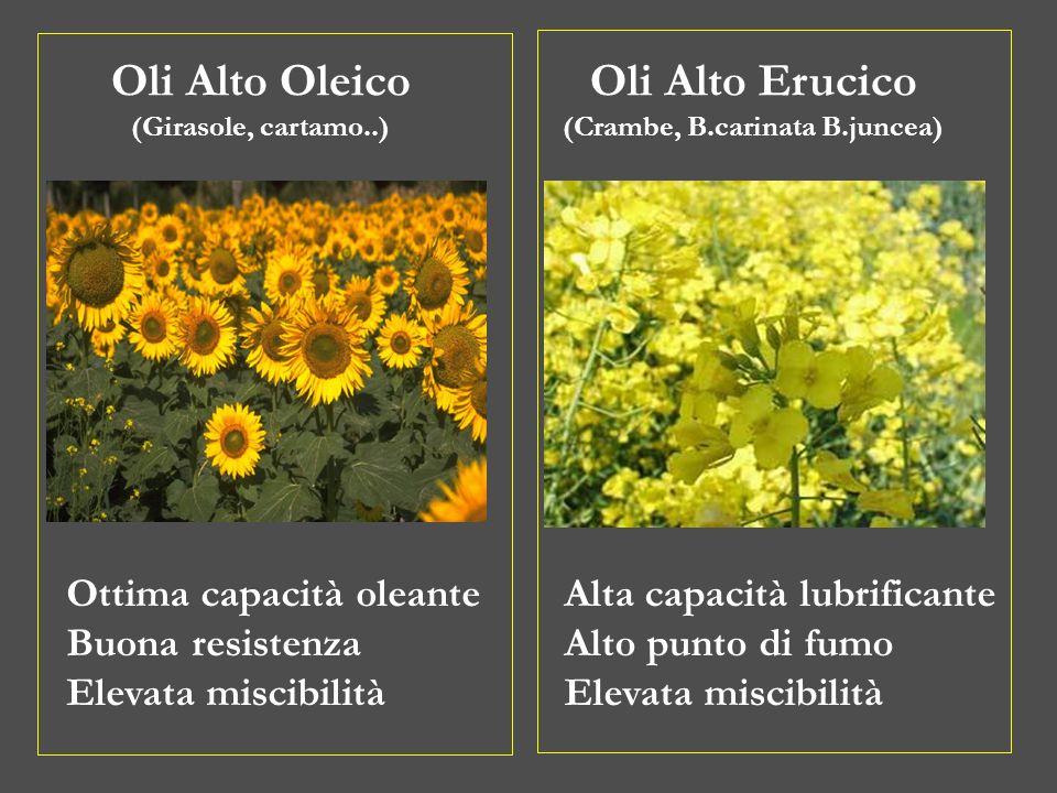 Oli Alto Oleico (Girasole, cartamo..) Oli Alto Erucico (Crambe, B.carinata B.juncea) Ottima capacità oleante Buona resistenza Elevata miscibilità Alta