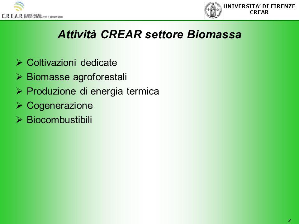 3 UNIVERSITA DI FIRENZE CREAR Attività CREAR settore Biomassa Coltivazioni dedicate Biomasse agroforestali Produzione di energia termica Cogenerazione Biocombustibili