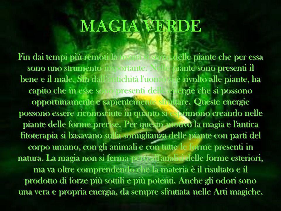 MAGIA VERDE Fin dai tempi più remoti la magia si serve delle piante che per essa sono uno strumento importante. Nelle piante sono presenti il bene e i