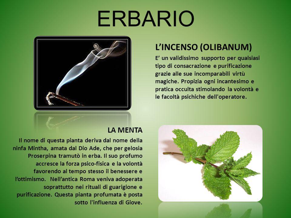 ERBARIO LINCENSO (OLIBANUM) E un validissimo supporto per qualsiasi tipo di consacrazione e purificazione grazie alle sue incomparabili virtù magiche.