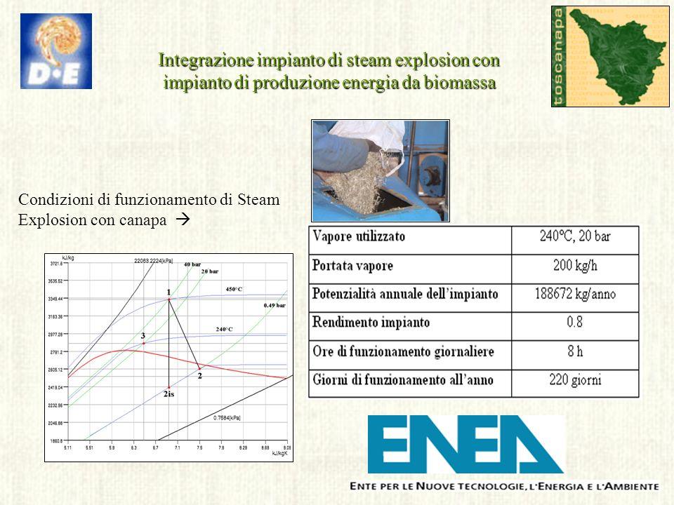 Condizioni di funzionamento di Steam Explosion con canapa Integrazione impianto di steam explosion con impianto di produzione energia da biomassa