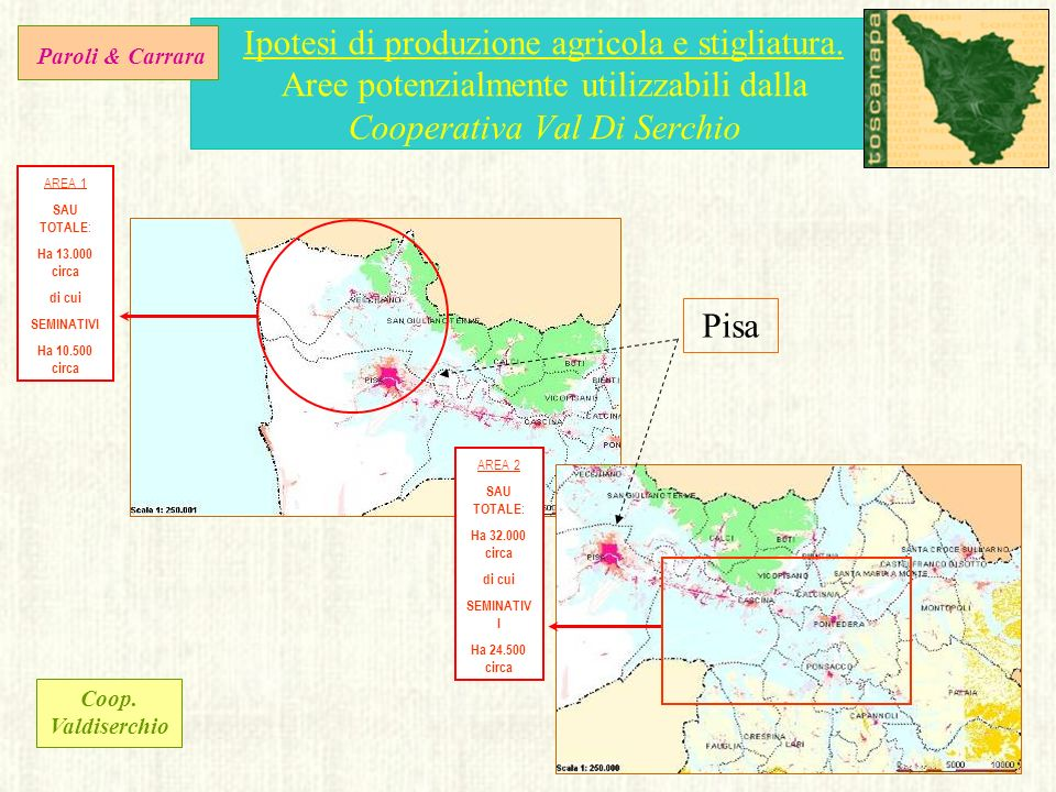 Ipotesi di produzione agricola e stigliatura. Aree potenzialmente utilizzabili dalla Cooperativa Val Di Serchio AREA 1 SAU TOTALE : Ha 13.000 circa di