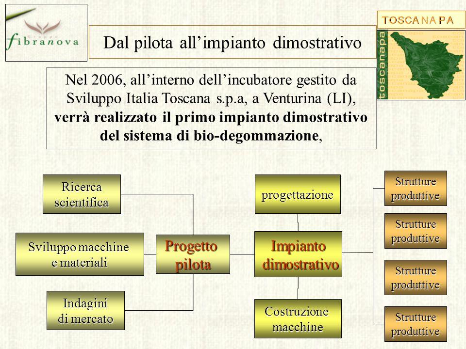 Dal pilota allimpianto dimostrativo Nel 2006, allinterno dellincubatore gestito da Sviluppo Italia Toscana s.p.a, a Venturina (LI), verrà realizzato i