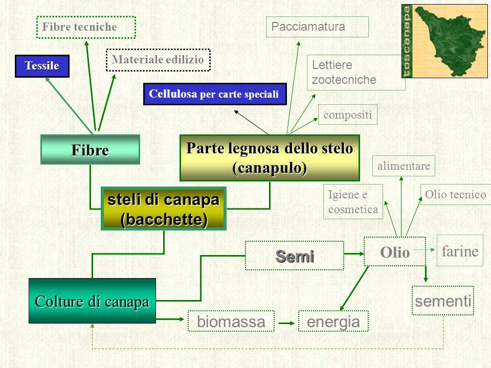Le ipotesi di utilizzo dei sottoprodotti della lavorazione della canapa
