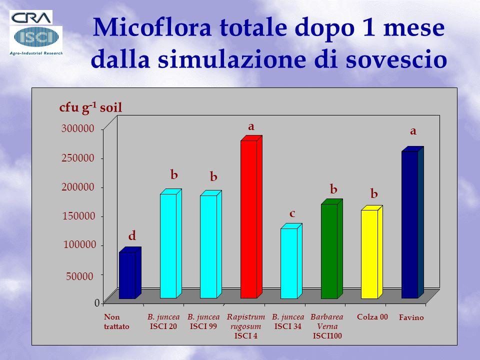 Micoflora totale dopo 1 mese dalla simulazione di sovescio d b b a c b b a 0 50000 100000 150000 200000 250000 300000 cfu g -1 soil Non trattato Colza 00 Favino B.