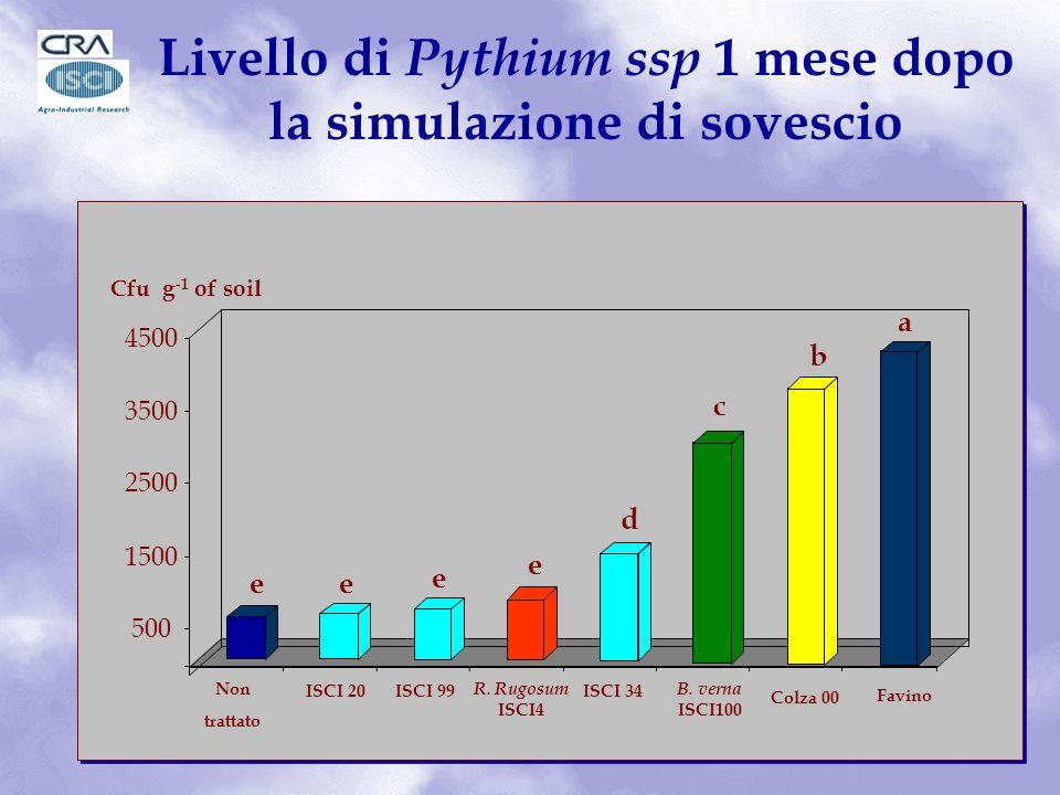 e e e e d c b a 500 1500 2500 3500 4500 Cfu g -1 of soil ISCI 20 ISCI 99 R.