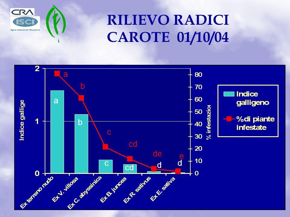 a b c cd d d a b c de e RILIEVO RADICI CAROTE 01/10/04