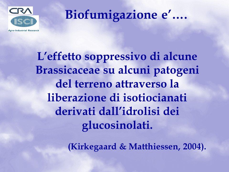 Biofumigazione e….
