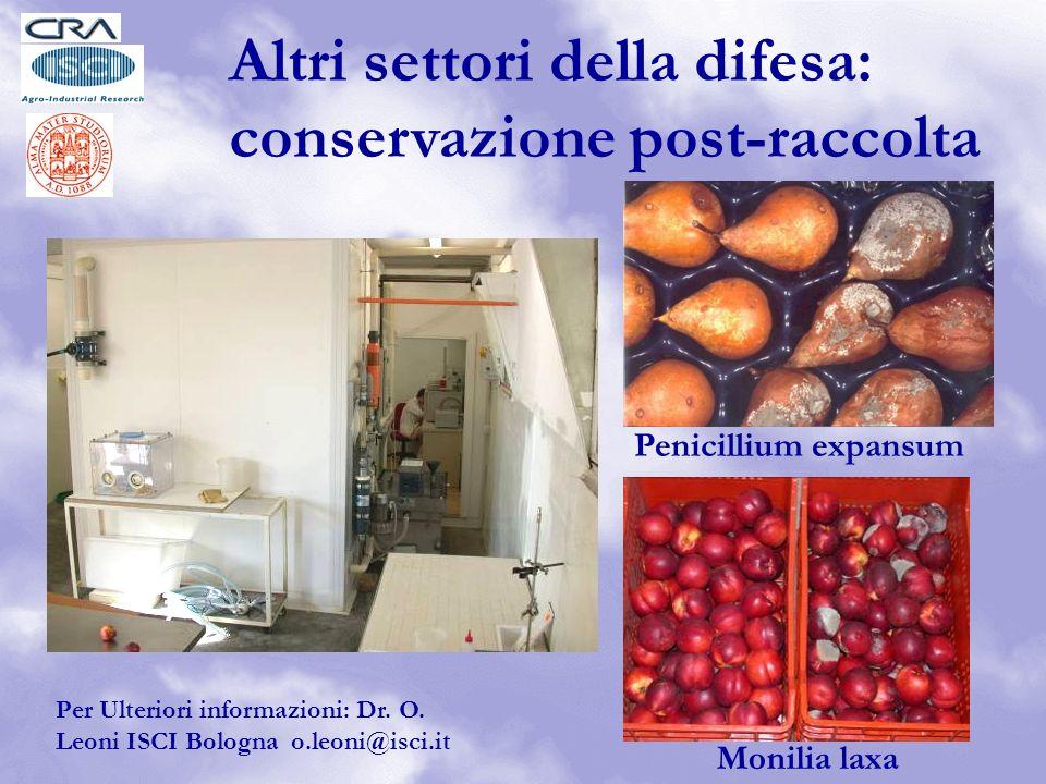 Penicillium expansum Monilia laxa Per Ulteriori informazioni: Dr.