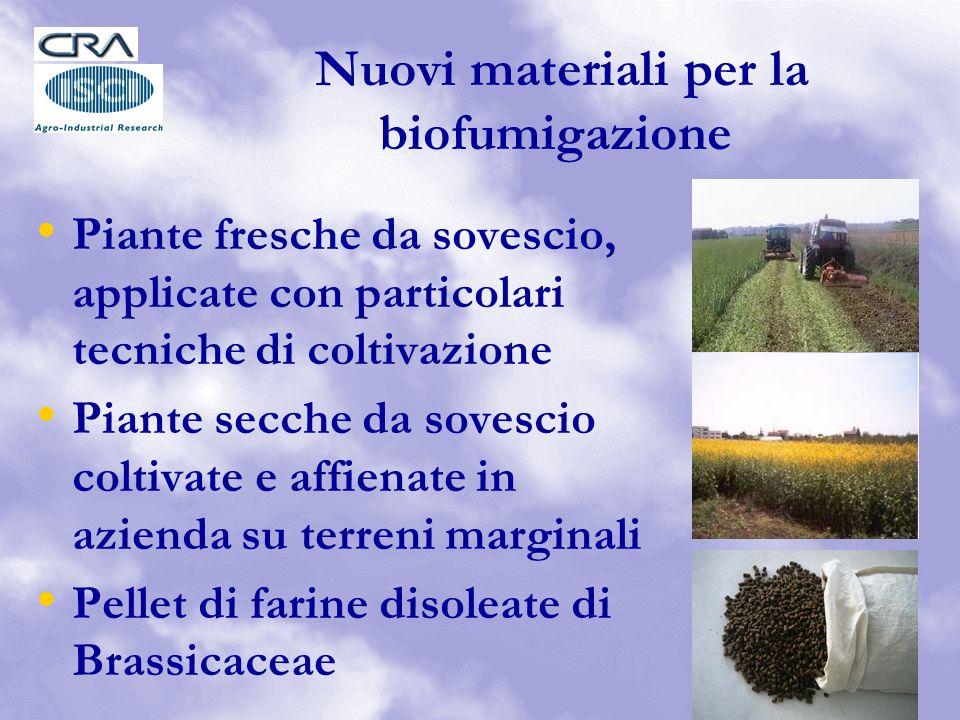 Nuovi materiali per la biofumigazione Piante fresche da sovescio, applicate con particolari tecniche di coltivazione Piante secche da sovescio coltivate e affienate in azienda su terreni marginali Pellet di farine disoleate di Brassicaceae
