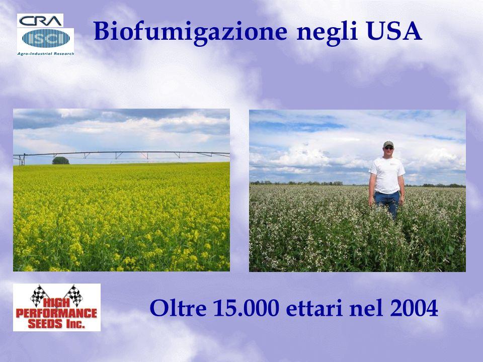 Biofumigazione negli USA Oltre 15.000 ettari nel 2004