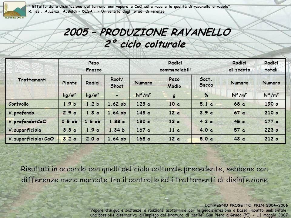2005 – PRODUZIONE RAVANELLO 2° ciclo colturale Trattamenti Peso Fresco Radici commerciabili Radici di scarto Radici totali PianteRadici Root/ Shoot Nu