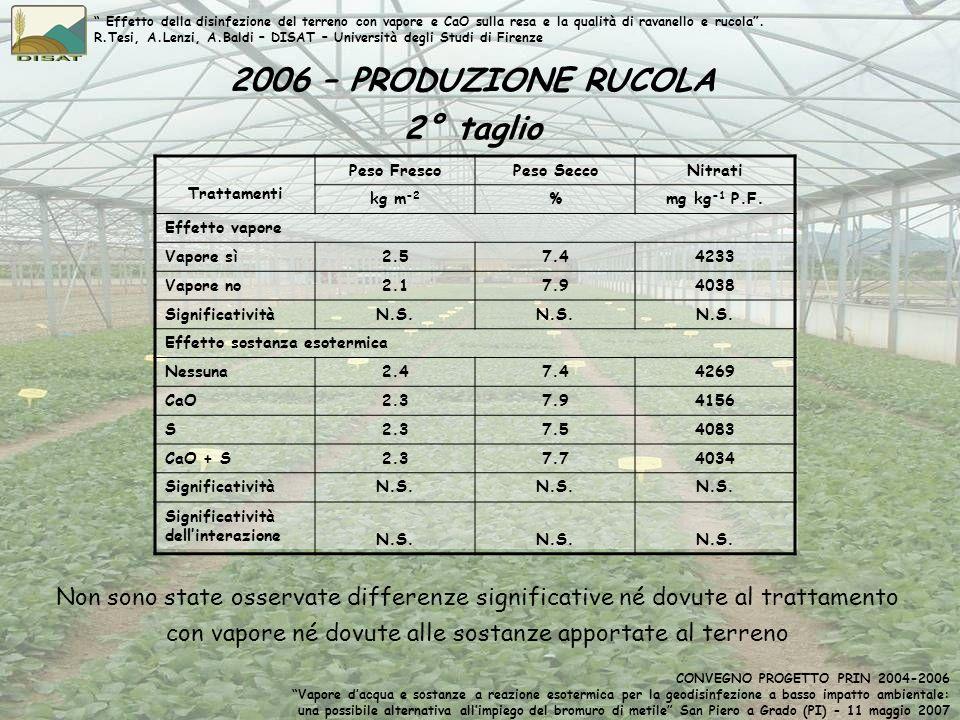 2006 – PRODUZIONE RUCOLA 2° taglio Trattamenti Peso FrescoPeso SeccoNitrati kg m -2 %mg kg -1 P.F. Effetto vapore Vapore sì2.57.44233 Vapore no2.17.94