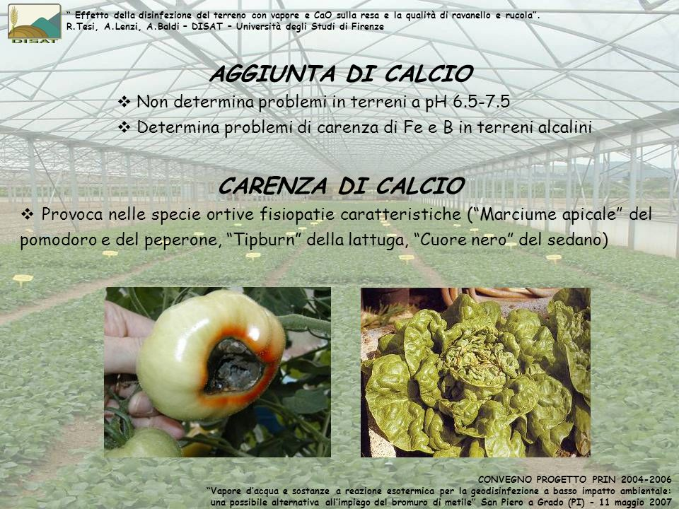 CARENZA DI CALCIO AGGIUNTA DI CALCIO Provoca nelle specie ortive fisiopatie caratteristiche (Marciume apicale del pomodoro e del peperone, Tipburn del