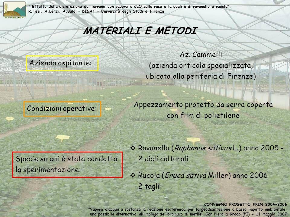 MATERIALI E METODI Azienda ospitante: Az. Cammelli (azienda orticola specializzata, ubicata alla periferia di Firenze) Condizioni operative: Appezzame