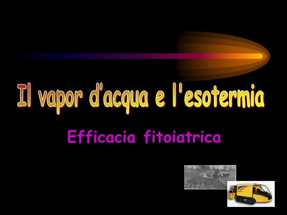Efficacia fitoiatrica