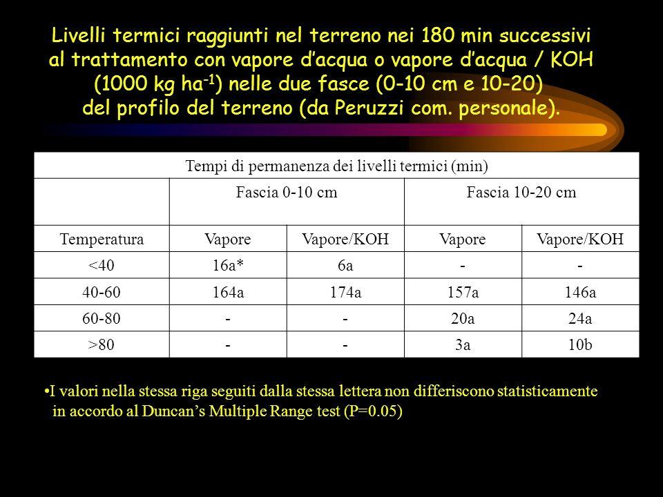 Livelli termici raggiunti nel terreno nei 180 min successivi al trattamento con vapore dacqua o vapore dacqua / KOH (1000 kg ha -1 ) nelle due fasce (