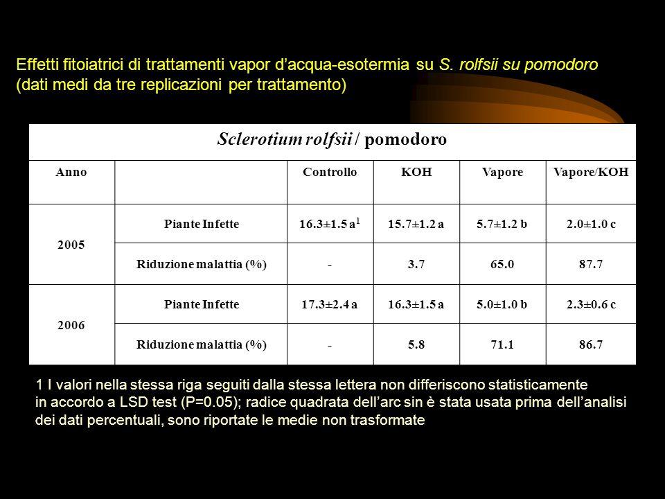 Sclerotium rolfsii / pomodoro AnnoControlloKOHVaporeVapore/KOH 2005 Piante Infette16.3±1.5 a 1 15.7±1.2 a5.7±1.2 b2.0±1.0 c Riduzione malattia (%)-3.7