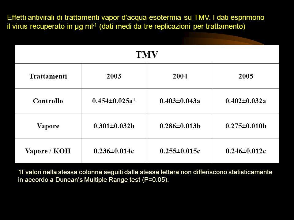 TMV Trattamenti200320042005 Controllo0.454±0.025a 1 0.403±0.043a0.402±0.032a Vapore0.301±0.032b0.286±0.013b0.275±0.010b Vapore / KOH0.236±0.014c0.255±