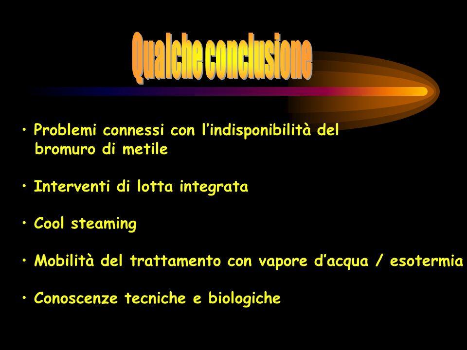 Problemi connessi con lindisponibilità del bromuro di metile Interventi di lotta integrata Cool steaming Mobilità del trattamento con vapore dacqua /