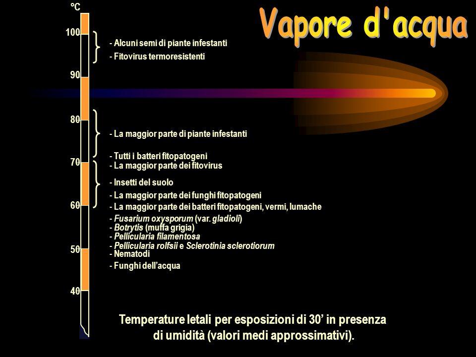 *Temperature relativamente basse per la devitalizzazione della maggior parte dei microrganismi patogeni.