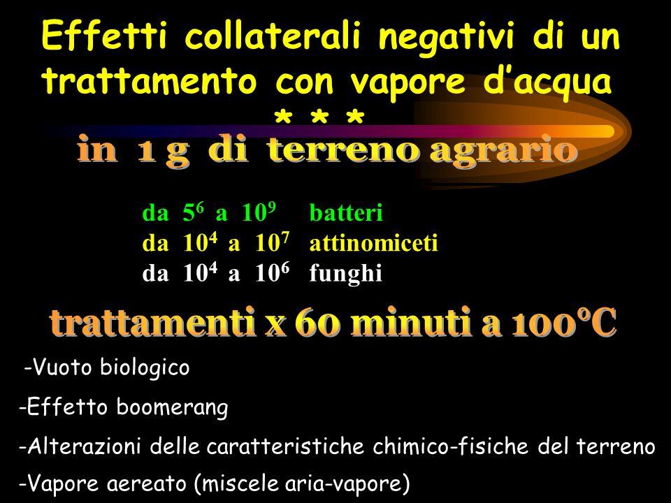 da 5 6 a 10 9 batteri da 10 4 a 10 7 attinomiceti da 10 4 a 10 6 funghi Effetti collaterali negativi di un trattamento con vapore dacqua * * * -Vuoto