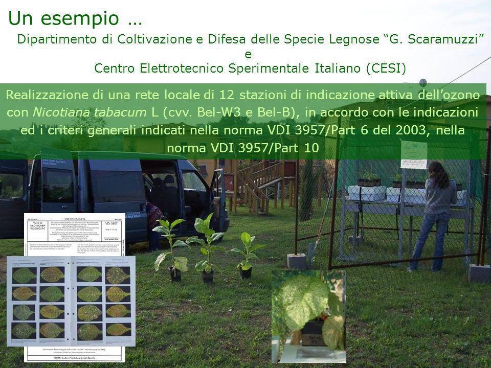 Un esempio … Dipartimento di Coltivazione e Difesa delle Specie Legnose G. Scaramuzzi e Centro Elettrotecnico Sperimentale Italiano (CESI) Realizzazio