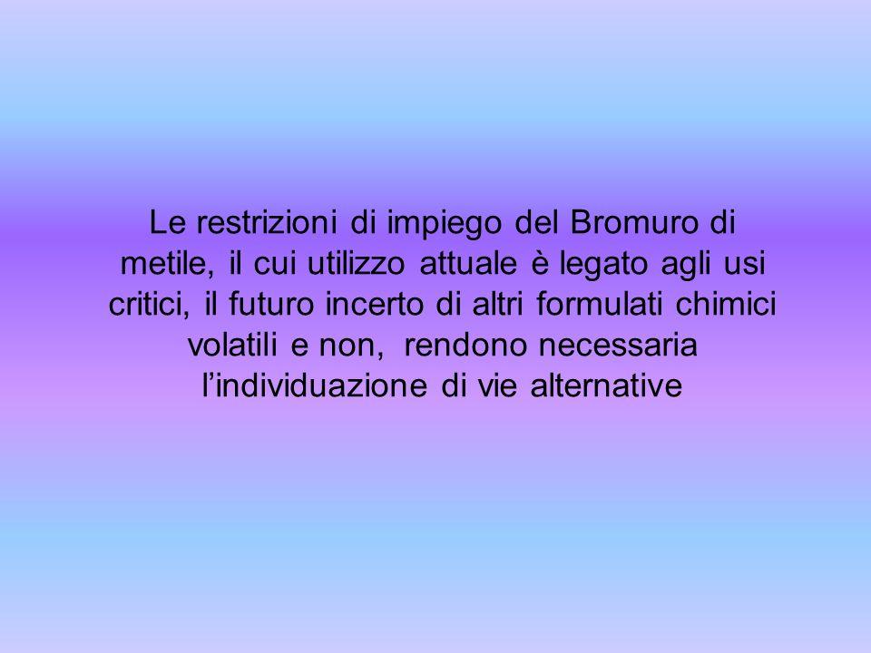 Le restrizioni di impiego del Bromuro di metile, il cui utilizzo attuale è legato agli usi critici, il futuro incerto di altri formulati chimici volat