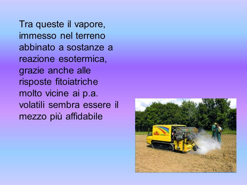 Tra queste il vapore, immesso nel terreno abbinato a sostanze a reazione esotermica, grazie anche alle risposte fitoiatriche molto vicine ai p.a. vola