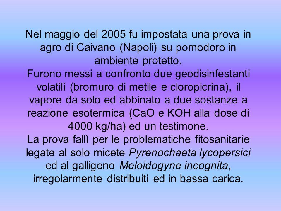 Nel maggio del 2005 fu impostata una prova in agro di Caivano (Napoli) su pomodoro in ambiente protetto. Furono messi a confronto due geodisinfestanti